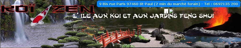 Koï Zen, carpe koi les passionnés Réunionais 974 Forum Index